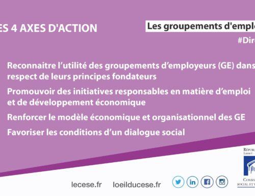 Rapport du CESE: 4 axes d'actions pour développer les groupements d'employeurs